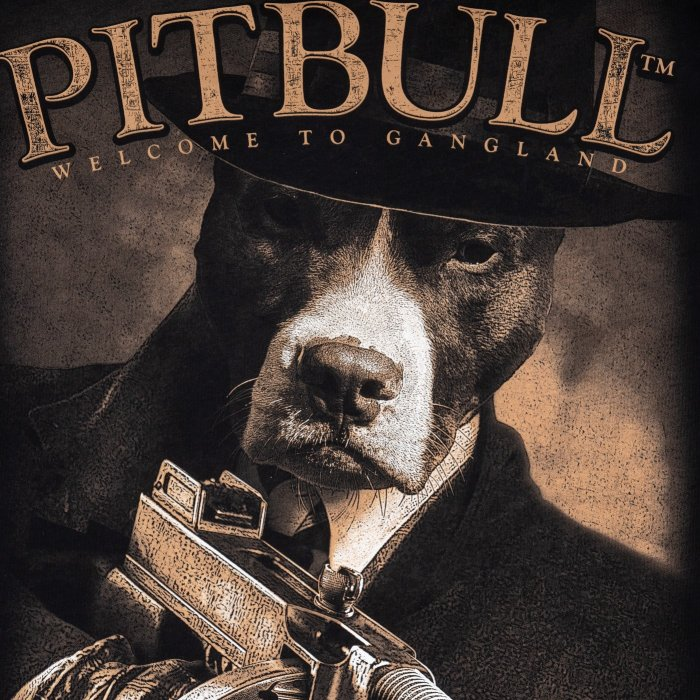 Pit Bull West Coast T-Shirt Tommy Schwarz
